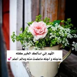 صورة Fatemaalshami, امراه
